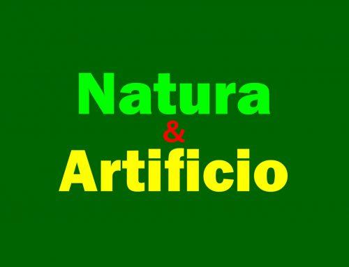 2014 NATURA & ARTIFICIO – BITM, Mostra collettiva FIDA-Trento